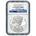 Certified Proof Silver Eagle 2015-W PF70 NGC Early Release